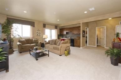 family-room